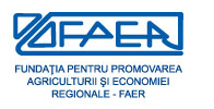 logo_faer